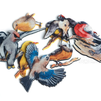 набор птицы из фетра, эко сувениры из фетра, эко сувениры с логотипом из фетра, экологические сувениры с логотипом на заказ