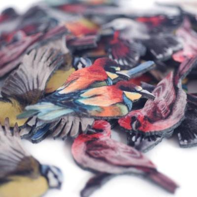 значки с полноцветом птицы из фетра